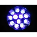 Linterna Led Ultravioleta 12led Billetes Falsos, Escorpiones