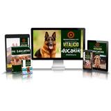 Curso Profesional De Educacion Canina - Seminarios Online