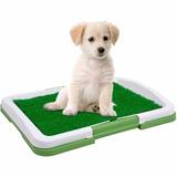 Tapete Baño Entrenamiento Perro Puppy Potty Pad Tv