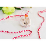 Hamster Gerbil Rata Mouse Chinchillas Conejillo De Indias Ar