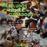 Guardería Canina / Alta Peluquería  / Colegio / Paseadores