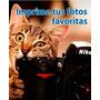 Combo Impresión De 25 Fotos 10x14,5 + 1 Foto 20x25 - 135 G