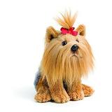 Demdaco Baby Plush Beanbag, Yorkshire Terrier- Envío Gratis