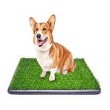 Tapete Entrenador Mascota Con Grama Tamaño 76.5 Cm X 51 Cm