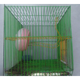 Jaula Hamster Pequeña