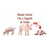 Curso Cria Cerdos Tecnica Engorde Cochinos Ganado Porcino
