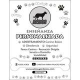 Educacion Canina Paseos Mascotas