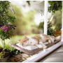 Sunny Seat - Silla Cama De Ventana Para Gatos