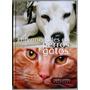 Libro Enfermedades En Perros Y Gatos - Grupo Latino