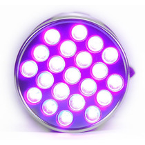 Linterna Led Uv Ultravioleta 21led Billetes Falsos Escorpion