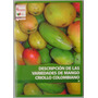 Descripción De Las Variedades De Mango Criollo Colombiano -
