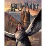 Libro Harry Potter Basado En El Fenómeno De Cine Gris