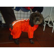 Enterizo Impermeable Para Perro
